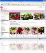 Visit Order a Bouquet